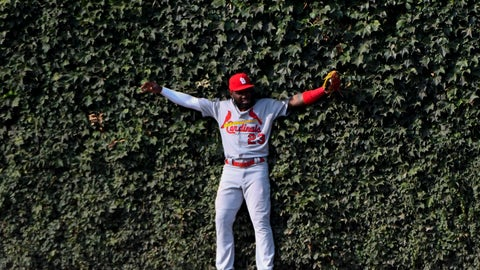 <p>               St. Louis Cardinals left fielder Marcell Ozuna (23) leans into the ivy after catching a fly ball hit by Chicago Cubs' Kris Bryant to end the seventh inning of a baseball game Friday, Sept. 20, 2019, in Chicago. (AP Photo/Matt Marton)             </p>