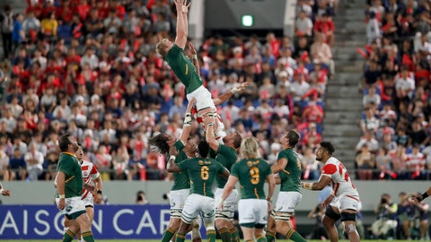 <p>               South Africa's Pieter-Steph du Toit grabs the ball during a line out against Japan for a rugby match at Kumagaya Rugby Stadium Friday, Sept. 6, 2019, in Saitama, Japan. (AP Photo/Shuji Kajiyama)             </p>