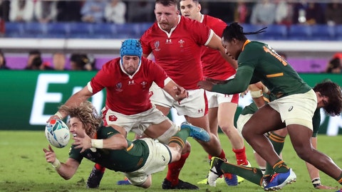 <p>               South Africa's Faf de Klerk catches the ball during the Rugby World Cup semifinal between South Africa and Wales at International Yokohama Stadium in Yokohama, Japan, Sunday, Oct. 27, 2019. (AP Photo/Eugene Hoshiko)             </p>