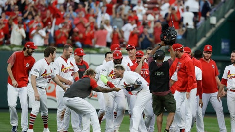 <p>               St. Louis Cardinals' Yadier Molina (4) celebrates with the team after hitting a sacrifice fly to score Kolten Wong and defeat the Atlanta Braves in Game 4 of a baseball National League Division Series, Monday, Oct. 7, 2019, in St. Louis. (AP Photo/Charlie Riedel)             </p>