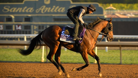 <p>               Four Wheel Drive, entered in the Juvenile Turf Sprint horse race, works out on the track at Santa Anita Park for the Breeders' Cup, Thursday, Oct. 31, 2019, in Arcadia, Calif. (AP Photo/Mark J. Terrill)             </p>