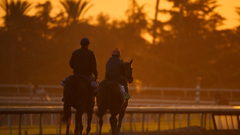<p>               Horses warm up in the early morning light at the Breeder's Cup horse races, Thursday, Oct. 31, 2019, at Santa Anita in Arcadia, Calif. (AP Photo/Mark J. Terrill)             </p>