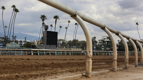 <p>               FILE - In this March 7, 2019, file photo, the home stretch race track is empty at Santa Anita Park in Arcadia, Calif. A 3-year-old gelding was fatally injured in the fifth race at Santa Anita, becoming the 34th horse to die at the track since December. According to a statement from track owner The Stronach Group, jockey Ruben Fuentes pulled up Satchel Paige at the three-eighths pole of the 6 ½-furlong sprint. (AP Photo/Damian Dovarganes, File)             </p>