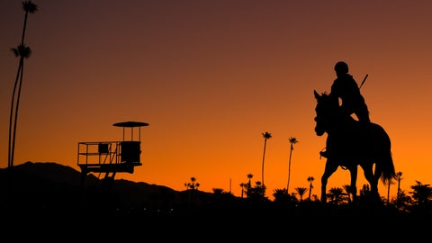 <p>               A horse warms up prior to the Breeders' Cup horse races at Santa Anita Park in Arcadia, Calif., Friday, Nov. 1, 2019. (AP Photo/Mark J. Terrill)             </p>