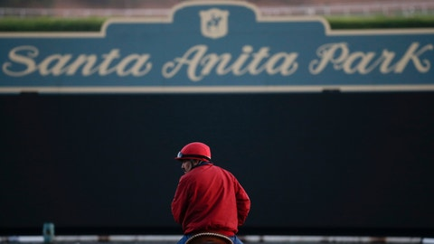 <p>               FILE - In this Oct. 29, 2014, file photo, an outrider waits by the track as horses train for the Breeders' Cup horse races at Santa Anita Park in Arcadia, Calif. An investigation into numerous horse deaths at Santa Anita Park found no criminal wrongdoing but produced a list of recommendations for improving safety at all California racetracks, the Los Angeles County district attorney said in a report Thursday Dec. 19, 2019. (AP Photo/Jae C. Hong, File)             </p>