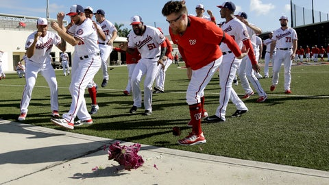 <p>               Washington Nationals pitcher Sean Doolittle smashes a cabbage on a sidewalk while teammates cheer as part of a team-building exercise and in recognition of National Cabbage Day during spring training baseball practice Monday, Feb. 17, 2020, in West Palm Beach, Fla. (AP Photo/Jeff Roberson)             </p>