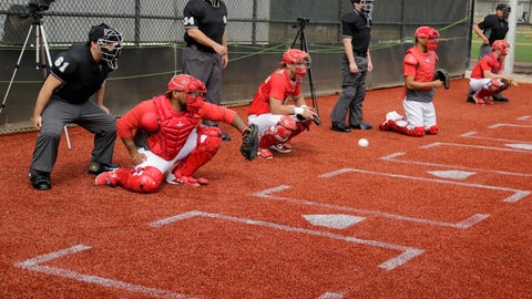 <p>               Philadelphia Phillies catchers work in the bullpen during a spring training baseball workout Friday, Feb. 14, 2020, in Clearwater, Fla. (AP Photo/Frank Franklin II)             </p>