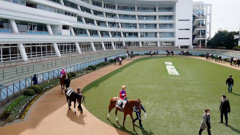 <p>               Horses and jockeys make their way in the paddock before a race without spectators amid growing concern about the spread of a new coronavirus, in Funabashi, near Tokyo Saturday, Feb. 29, 2020. (Kyodo News via AP)             </p>