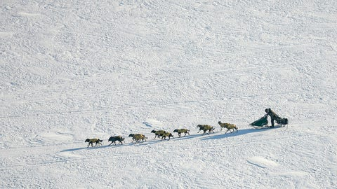 <p>               FILE - In this March 10, 2007 file photo Iditarod Trail Sled Dog Race front runner, four-time Iditarod champion Jeff King of Denali Park, Alaska, drives his dog team through the wind on the Yukon River near the Eagle Island, Alaska. When 57 mushers line up Sunday, March 8, 2020 for the official start of the Iditarod Trail Sled Dog Race, it will be the second-smallest field in the past two decades.  (AP Photo/Al Grillo,File)             </p>
