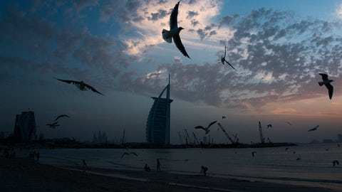 <p>               Seagulls soar over those gathered on a beach in front of the luxury Burj Al Arab hotel despite the global new coronavirus pandemic in Dubai, United Arab Emirates, Friday, March 20, 2020. The United Arab Emirates has closed its borders to foreigners, including those with residency visas, over the coronavirus outbreak, but has yet to shut down public beaches and other locations over the virus. (AP Photo/Jon Gambrell)             </p>