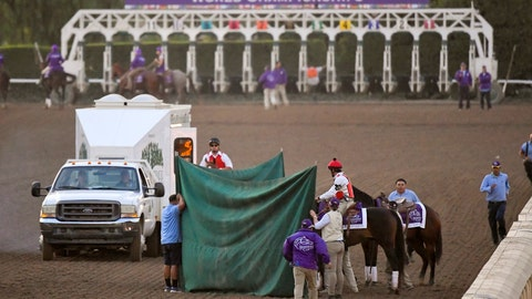 <p>               FILE - This Nov. 2, 2019, file photo shows track workers treating Mongolian Groom after the Breeders' Cup Classic horse race at Santa Anita Park, in Arcadia, Calif. Breeders' Cup Classic. A report released Tuesday, March 10, 2020, by the California Horse Racing Board on a spate of horse deaths at Santa Anita found that no illegal medications were used on the animals and 39% percent of the 23 fatalities occurred on surfaces affected by wet weather. The long-awaited report focused on 23 deaths as a result of racing or training between Dec. 30, 2018, and March 31, 2019. The fatalities roiled the industry and led track owner The Stronach Group to institute several reforms involving safety and medication. (AP Photo/Mark J. Terrill, File)             </p>
