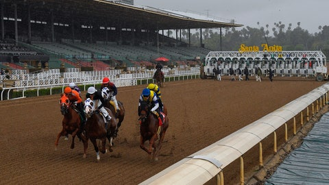 <p>               Horses run in the fourth race at Santa Anita Park in front of empty stands, Saturday, March 14, 2020, in Arcadia, Calif. While most of the sports world is idled by the coronavirus pandemic, horse racing runs on. (AP Photo/Mark J. Terrill)             </p>