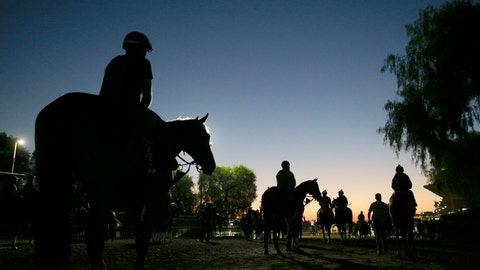 <p>               FILE - In this Oct. 29, 2014, file photo, riders and horses walk toward the track for a morning workout ahead of the Breeders' Cup races at Santa Anita Park in Arcadia, Calif. A report released Tuesday, March 10, 2020, by the California Horse Racing Board on a spate of horse deaths at Santa Anita found that no illegal medications were used on the animals and 39% percent of the 23 fatalities occurred on surfaces affected by wet weather. The long-awaited report focused on 23 deaths as a result of racing or training between Dec. 30, 2018, and March 31, 2019. The fatalities roiled the industry and led track owner The Stronach Group to institute several reforms involving safety and medication. (AP Photo/Jae C. Hong, File)             </p>