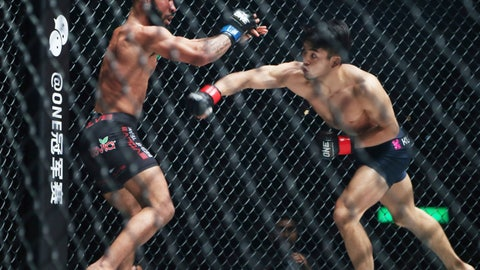 <p>               FILE - In this March 31, 2019, file photo, Mixed Martial Arts fighters Demetrious Johnson, left, of the United States and Japan's Yuya Wakamatsu fight during their flyweight One Championship bout in Tokyo. The cage door is locked for the season on the Professional Fighters League, the latest combat sports promotion flattened because of the coronavirus pandemic. (AP Photo/Koji Sasahara, File)             </p>