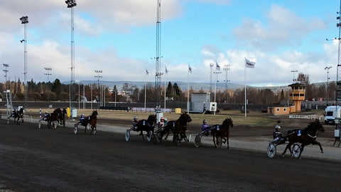 <p>               In this photo taken on Thursday, April 30, 2020, horse race at the Bergsaker racecourse in Vasternorrland, Sweden. Swedish trotting is one of only a handful of European sports to have persevered during the coronavirus outbreak while competitions elsewhere shut down across the continent. That's not just good news for the 40,000 people working in the equestrian sector in Sweden. It's something of a savior for betting companies and gamblers around the world who have been starved of their usual diet of top-class sport in Europe. (AP Photo/Steve Douglas)             </p>