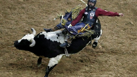 <p>               FILE - In this Dec. 12, 2018 file photo, Dustin Boquet, of Bourg, La., competes in the bull riding event in the National Finals Rodeo, in Las Vegas. One of the first professional sporting events to allow spectators into the arena during the coronavirus pandemic will be a sport known for its wild, dangerous action _ bull riding. Professional Bull Riders is planning to host live crowds for a competition July 10-12, 2020, in the 12,000-seat Denny Sanford Premiere Center in Sioux Falls. (AP Photo/John Locher, File)             </p>