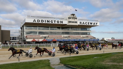 <p>               The field in race five race at the Addington Raceway in Christchurch, New Zealand, Thursday, May 28, 2020. New Zealand's financially troubled horse racing industry has reopened Thursday after being shuttered for weeks because of the coronavirus outbreak, leading the return of organized sports as the nation moves toward normality. A harness racing meeting which took place without fans at the Addington racecourse in Christchurch was the first since New Zealand went into strict lockdown on March 24. (AP Photo/Mark Baker)             </p>