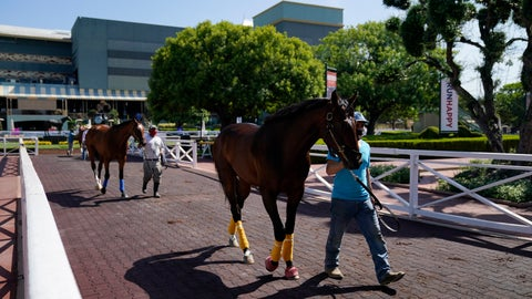 <p>               In this Friday, May 22, 2020 photo, grooms wearing face masks lead horses to the paddock at Santa Anita Park in Arcadia, Calif. Horse racing returned to the track after being idled for one and a half months because of public health officials' concerns about the coronavirus pandemic. (AP Photo/Ashley Landis)             </p>