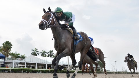 <p>               In this April 25, 2020, photo provided by Coglianese Photos, Dr Post, Irad Ortiz Jr. up, races to victory in the Unbridled Stakes horse race at Gulfstream Park in Hallandale, Fla. Dr Post with jockey Irad Ortiz Jr. are scheduled to race in the Belmont Stakes on Saturday, June 20. (Ryan Thompson/Coglianese Photos via AP)             </p>