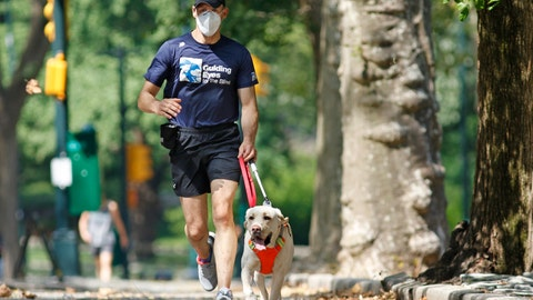 <p>               Thomas Panek runs with his running guide, Blaze, a Labrador retriever, Thursday, July 23, 2020, in Central Park in New York. Panek, a blind runner with a wall full of ribbons from marathons he ran with a human guide, developed a canine running guide training program five years ago after he became president and CEO of Guiding Eyes for the Blind in suburban New York. (AP Photo/Kathy Willens)             </p>