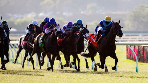 <p>               In this image provided by Benoit Photo, Hit the Road, with Umberto Rispoli aboard, wins the $100,000 Runhappy Oceanside Stakes horse race Friday, July 10, 2020, at Del Mar Thoroughbred Club in Del Mar, Calif. (Benoit Photo via AP)             </p>