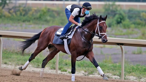 <p>               FILE - In this Thursday, June 18, 2020, file photo, Belmont Stakes hopeful Dr Post works out on a track at Belmont Park in Elmont, N.Y. Dr Post, runner up in the Belmont Stakes, is one of the favorities in Saturday's July 18 Haskell Stakes horse race at Monmouth Park Racetrack in Oceanport, N.J. (AP Photo/Seth Wenig, File)             </p>