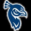 Saint Peter's Peacocks