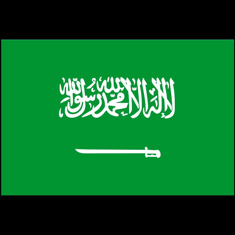 Saudi Arabia Team News - SOCCER
