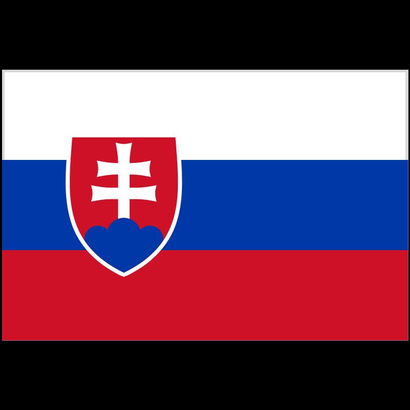 Slovakia Team News - SOCCER