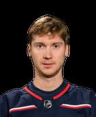 Bobrovsky, Sergei