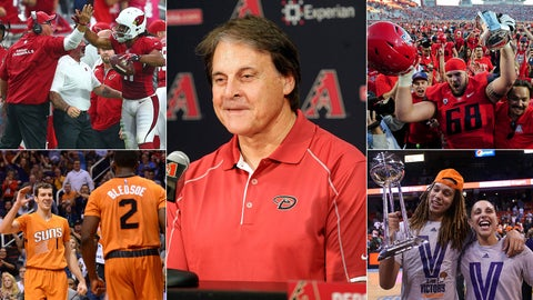2014: A captivating year for Arizona sports personalities