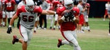 Ex-rugby player Lasike brings physicality to Cardinals backfield
