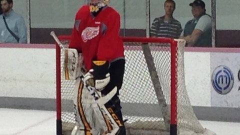 Red Wings Development Camp Day 1