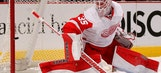 Wings look to hand Stars sixth straight home loss of series