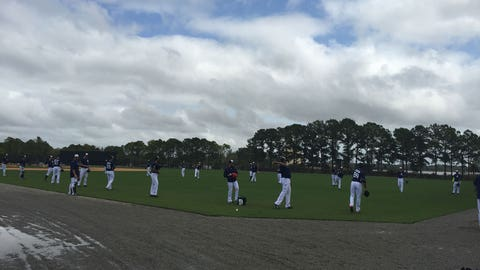 Tigers spring training 3.1.15