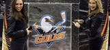 San Diego Hockey Fest