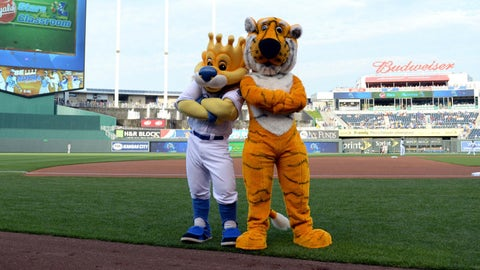 Sluggerr with Missouri's Truman the Tiger