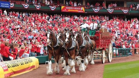 Opening Day at Busch Stadium