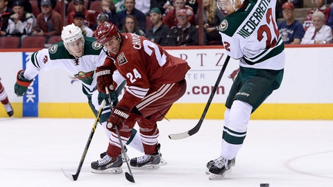 Wild at Coyotes: 12/13/14