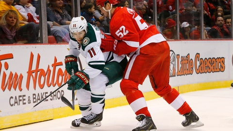 Wild at Red Wings: 1/20/15