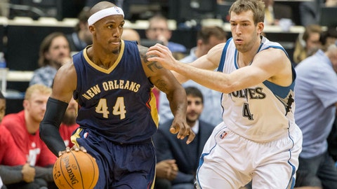 Pelicans at Wolves: 1/23/15
