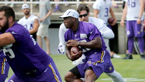 2015 Vikings training camp