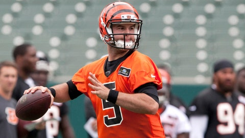 What can A.J. McCarron do?