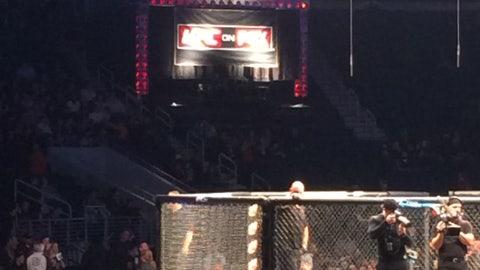 FOX Sports South Girls at UFC Fight Night 35