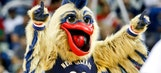 Pelicans mascot will soon have new look after 'surgery'
