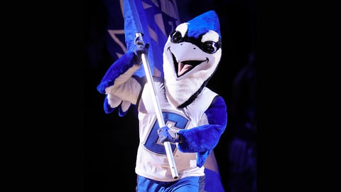 Creighton Bluejays