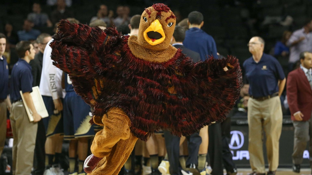 From Worst to First: Ranking the 2014 March Madness Mascots