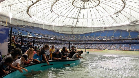 Tropicana Field - St. Petersburg, Florida