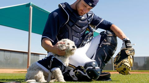 Hank, Milwaukee Brewers, 2014-