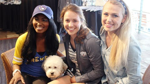 Don't call it a catwalk! At Miller Park, it's all about the dogs… especially the Most Valuable Pup – Hank!